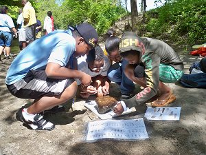 Students Identifying Macro-invertebrates