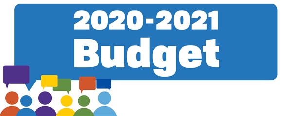 budget 2021 - photo #19